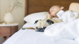 la-importancia-de-dormir-bien-tambien-para-la-piel-1920